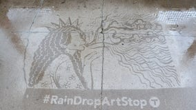 Metro Transit unveils rain art at more than a dozen bus, LRT stops
