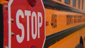 Troopers: In first 12 days of school, 99 reports of Minnesota drivers violating school bus traffic laws