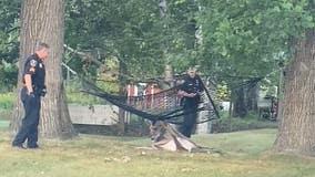 Dash cam video: Officers rescue buck stuck in hammock in Grand Rapids