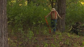 'I can't say that it's fun': Man volunteers to pull buckthorn at Lake Harriet