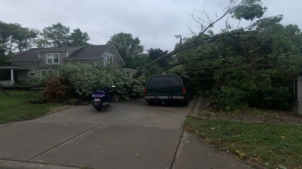 Overnight storms knock out power, down trees around the metro