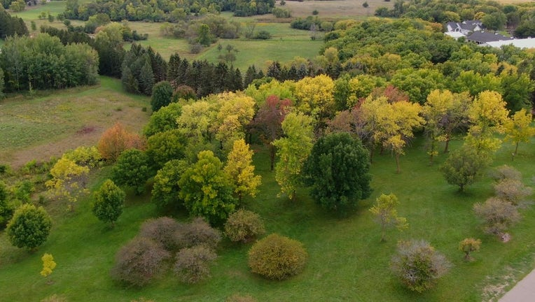 drone fall colors 2021