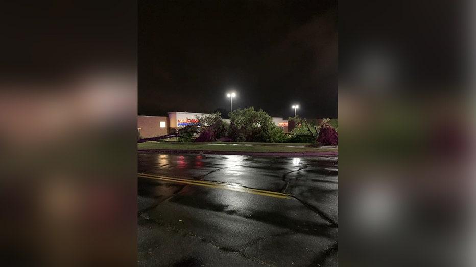 burnsville trees down 2 resized