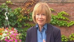 Sen. Tina Smith says she will vote against charter change for Minneapolis police