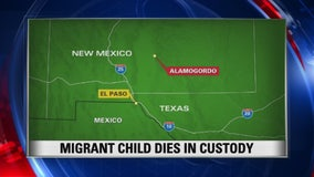 US immigration authorities say an 8-year-old boy from Guatemala has died in government custody