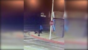 Woman attacked in El Monte