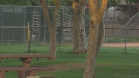 Man stabbed to death at park in San Fernando