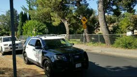 Horse traffic task force in Shadow Hills