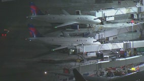 Delta flight from LAX to Seattle struck by lightning