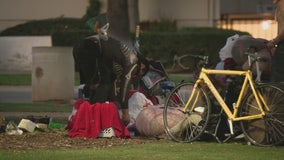 Increase in complaints of lewd acts in Santa Monica