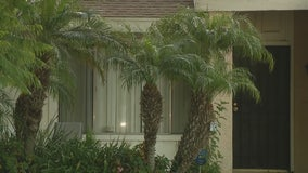 Police investigating stabbing at Ontario home
