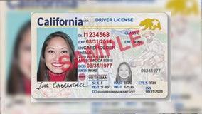 California Real ID program confusion