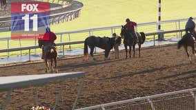 FOX 11 camera captures fatal injury of 22nd at Santa Anita Park