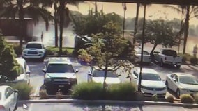 Dramatic hit and run captured on video in Loma Linda