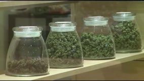 Recreational pot: License applications begin in Los Angeles