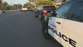Woman, dog killed in officer-involved shooting