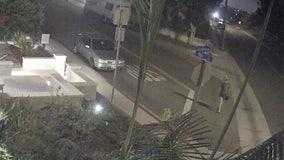 Police seek help in finding sexual predator in Manhattan Beach