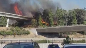 Brush fire shuts down two freeways in the Glendale and Eagle Rock area