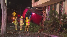 Driver killed when car plows into Arcadia floral shop