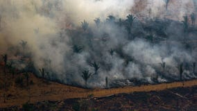 G-7 countries commit $20 million to help fight Amazon wildfires
