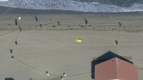 Two bodies found on Torrance Beach shoreline