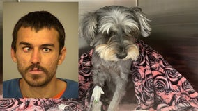 Man faces animal cruelty charges after brutally attacking dog in Port Hueneme