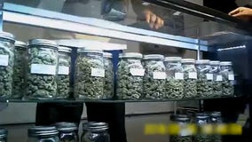 City shuts down illegal cannabis dispensary in South Los Angeles