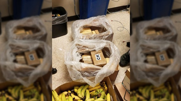 22 kilos of cocaine worth $550K found in boxes of bananas at Safeway, according to sheriff