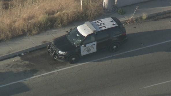 Dead Body On Freeway Today