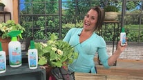 SHE-E-O: Greenerways Organic founded by Jayme Bella