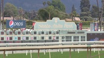Another horse euthanized after suffering injury during training at Santa Anita race track