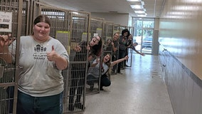 Florida humane society celebrates empty cages after community rushes to aid of shelter animals