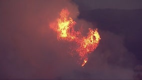 Crews battle rapidly spreading vegetation fire in La Cresta; mandatory evacuations issued