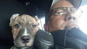 Florida cop makes Hurricane Dorian rescue, adopts 6-week-old puppy named 'Dory'
