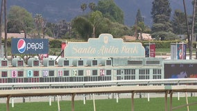 Horse dies at Santa Anita race track, a day after opening for fall season