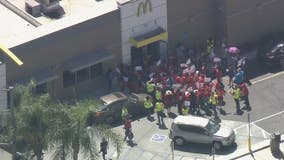 McDonald's employees strike over sexual harassment allegations