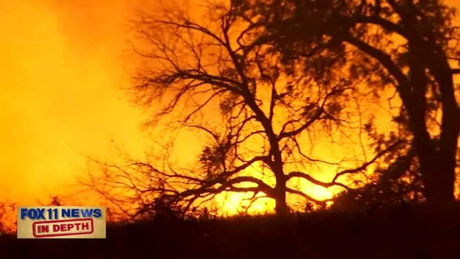 In Depth: Amazon Fires