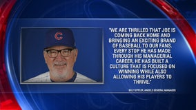 Joe Maddon named as new manager of Los Angeles Angels