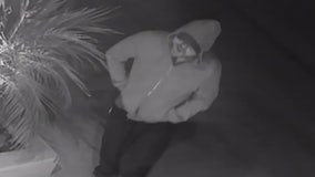 VIDEO: Sherman Oaks burglar gets away from LAPD; homeowner frustrated