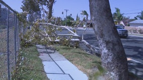 Fierce Santa Ana winds blowing across Southern California