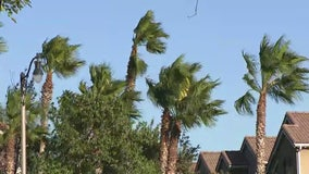 Red Flag conditions return to Southland: High winds, low humidity