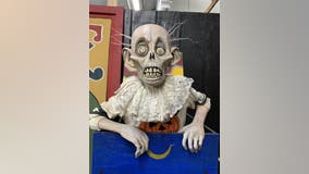 The Halloween spirit is alive and well at Hollywood special effects shop 'Illusion Industries'