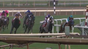 Horse dies after suffering heart attack at Santa Anita racetrack, 33rd death since December