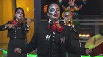 Mariachi Divas perform live on GDLA