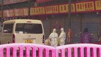 LAX to conduct health screenings due to Chinese coronavirus outbreak