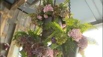 Lisa Vanderpump premieres new garden at Tom Tom expansion