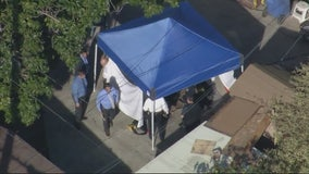 Investigation underway after human remains found in South LA