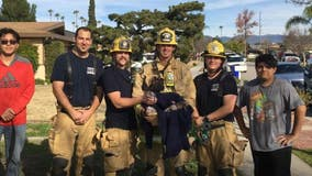 San Bernardino County firefighters save litter of puppies from burning home