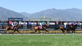 Third horse dies this weekend at Santa Anita Park
