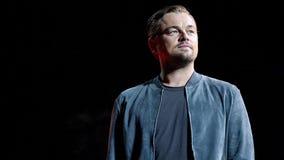 Leonardo DiCaprio's Earth Alliance foundation to donate $3 million to Australia fire relief